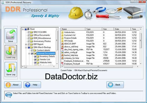 Professional Recovery Review for Windows
