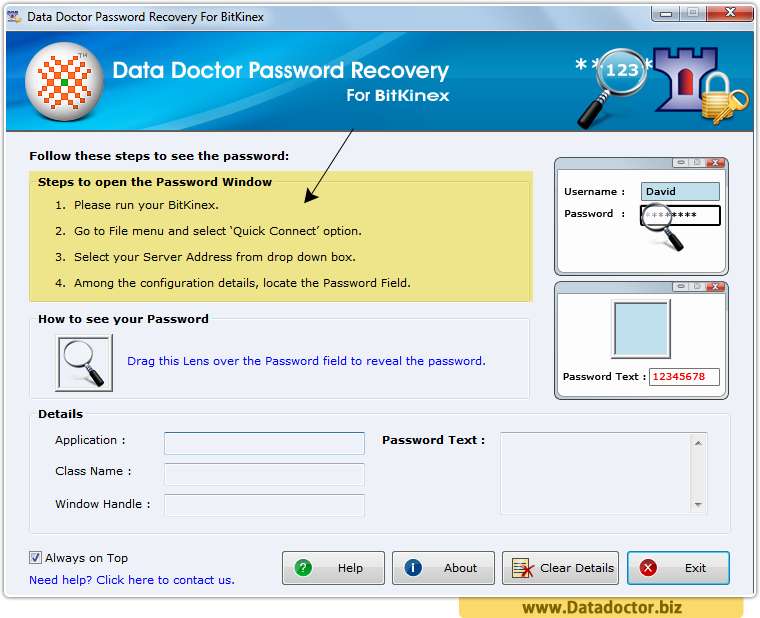 Password Recovery For BitKinex