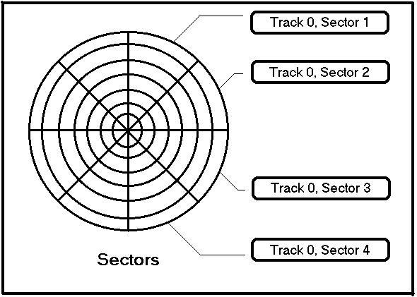 Estructura Física Del Trazado De Circuito De La Geometría