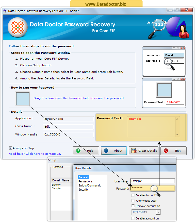 Password Recovery Software For DAP