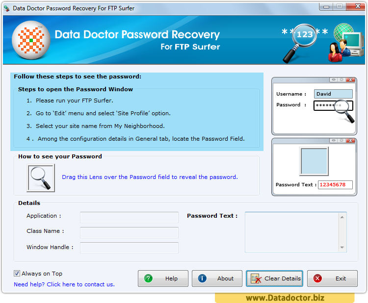 Password Recovery For FTP Surfer