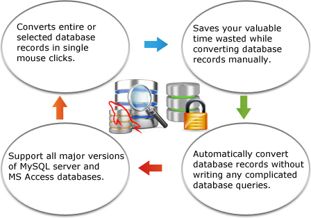 MySQL to MS Access Database Converter Features