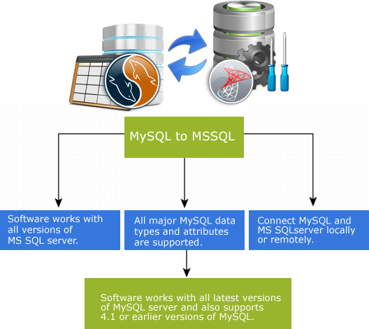 MySQL to MS SQL Database Converter Features