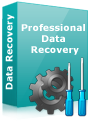 DDR Professional Data Recovery